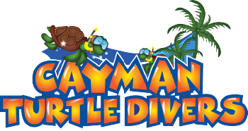 Grand Cayman Diving | Dive & Snorkel Shop | Cayman Turtle Divers on virgin islands logo, cayman islands logo, bolivia logo, necker island logo, japan logo, freeport logo, peru logo, lebanon logo, papua new guinea logo, morocco logo, ukraine logo, cayman airways logo, grand namibia logo, fiji logo, antigua logo, poland logo, philippines logo, grand banks logo, united arab emirates logo, vancouver logo,