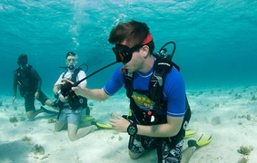 Scuba Diving in the Caymans